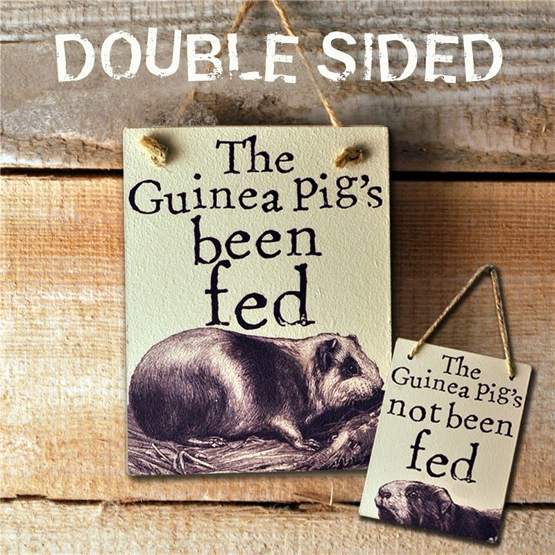 Order Double Sided The Guinea Pig's Been Fed - (etch)