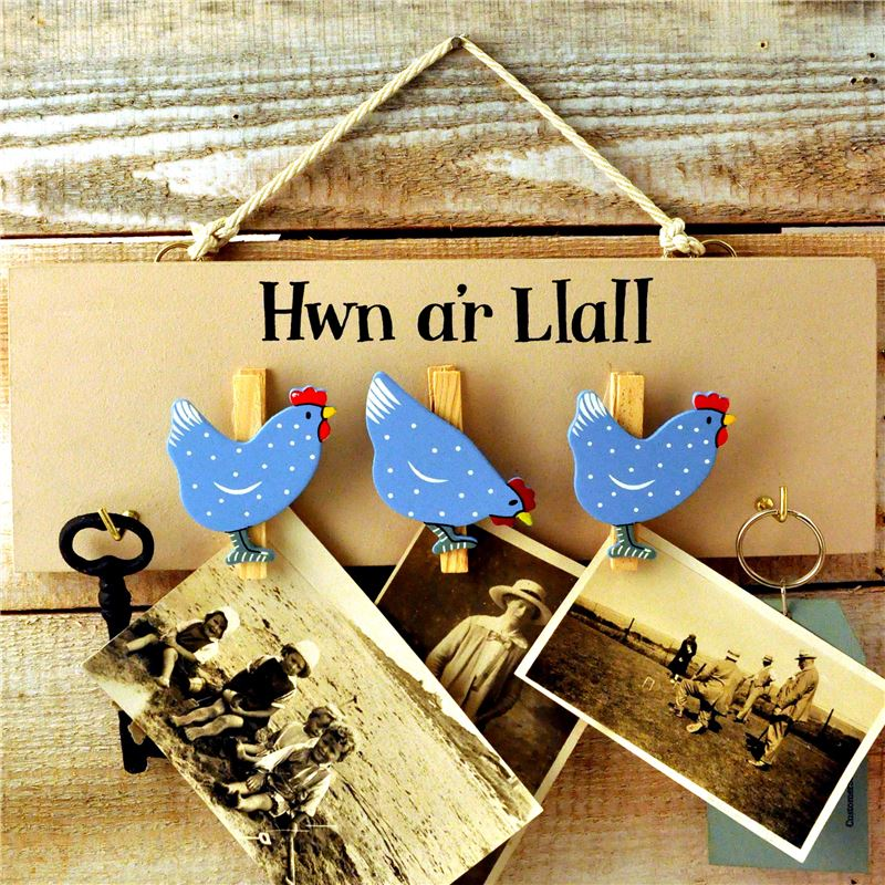 Order Hwn a'r Llall - 'This and That'  hen peg board
