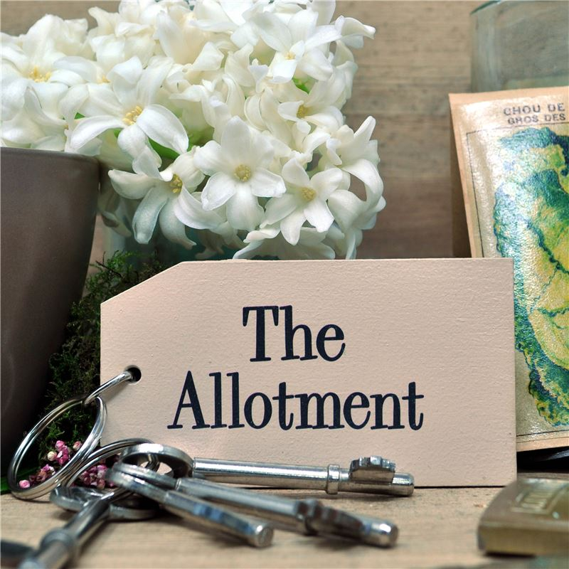 Wooden Key Ring:  Allotment Key