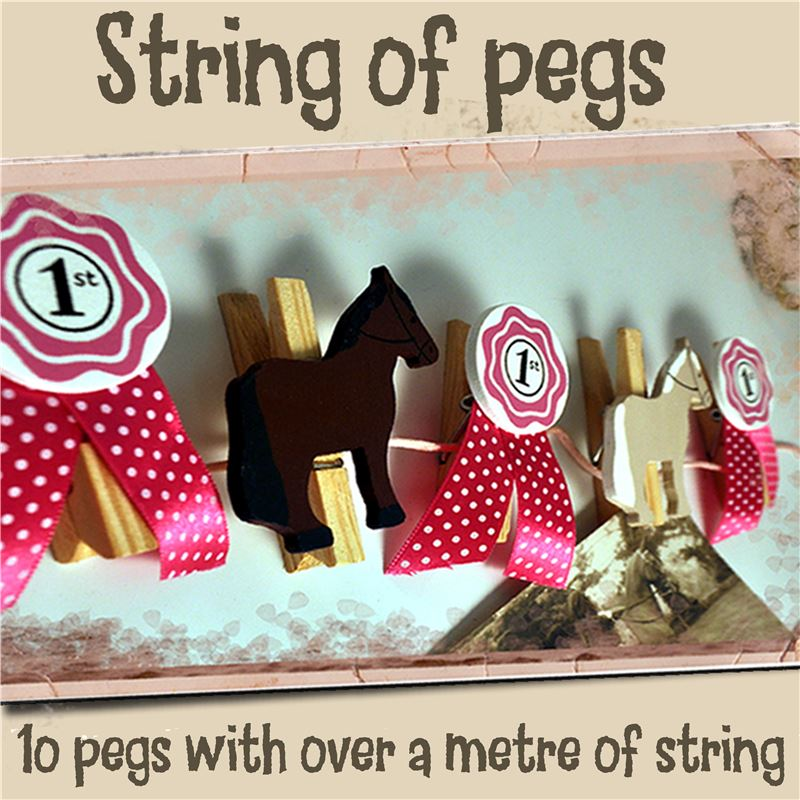 Order String of Pegs:  Horses