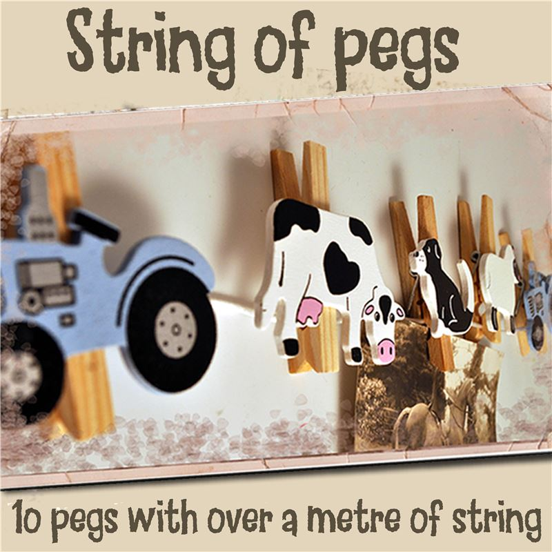 Order String of Pegs: Farm Animals