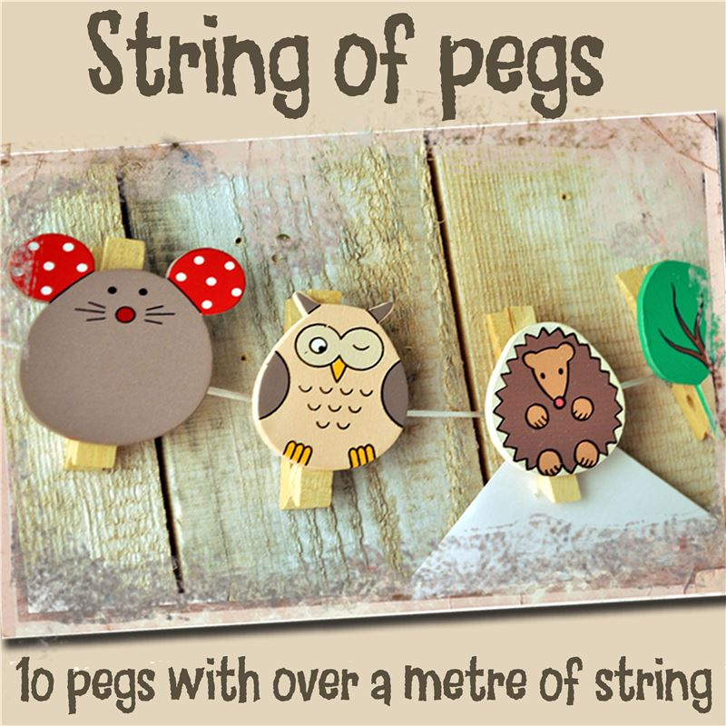 Order String of Pegs: Woodland Creatures