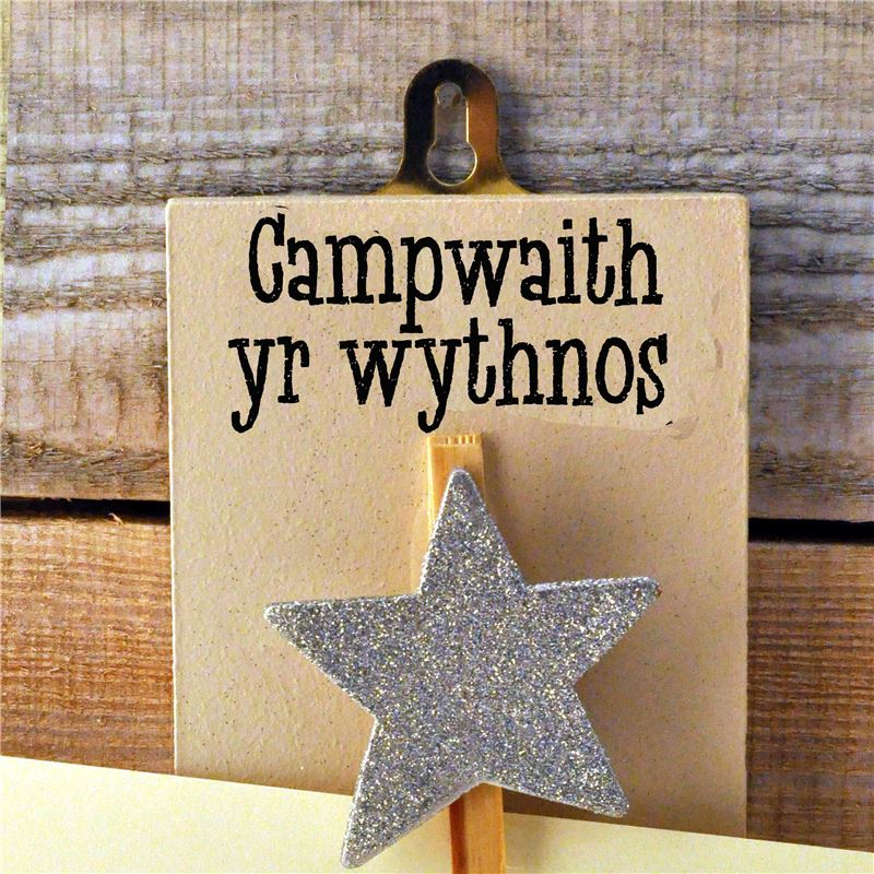Order Hand Painted Wooden Peg:  Campwaith yr Wythnos (Silver Star)