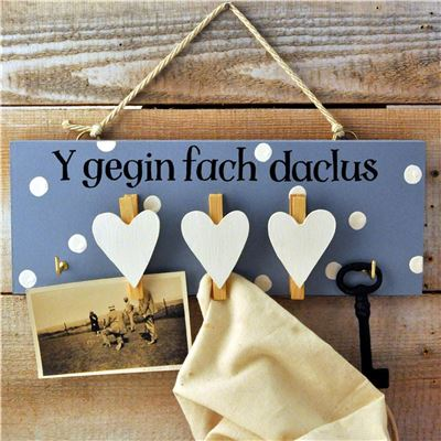 Y gegin fach daclus - the kitchen tidy (blue)