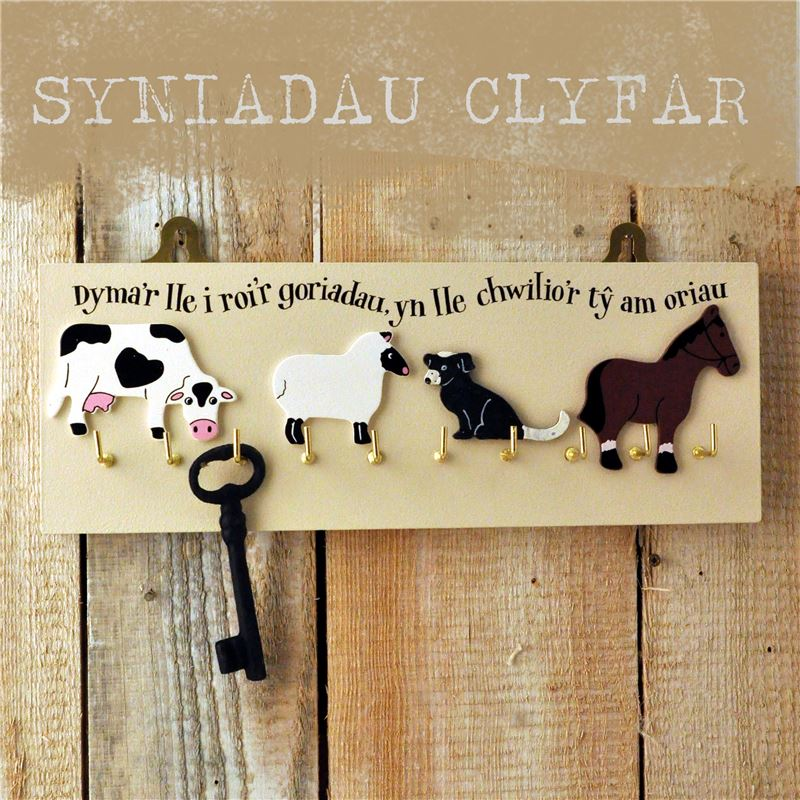 Order Dymar lle roi'r goriadau…Here's a place to hang your keys…